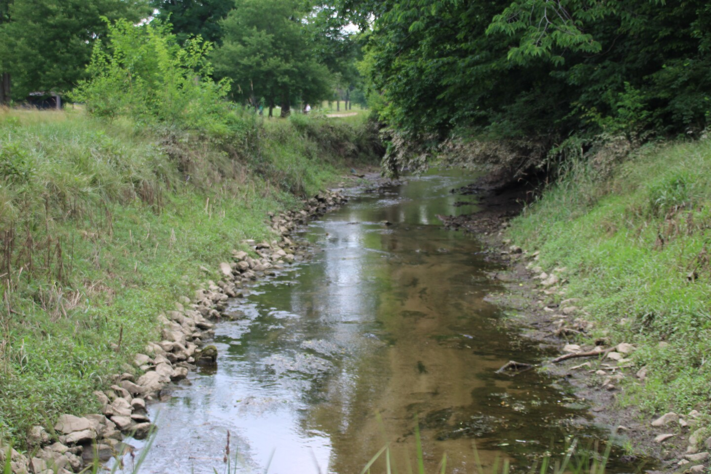 Creek and trees-2021- Circle K Junior Championship hosted by Otter Creek.JPG