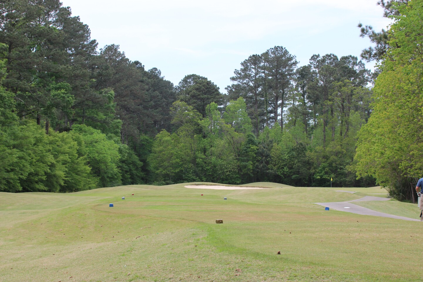 green fairway- - AJGA Previewt at Greystone 2019.JPG