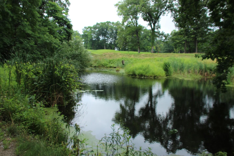 Reflections in pond  -2021 Dana Inc Junior Open.JPG