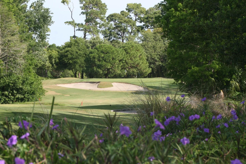 Innisbrook Resort & Golf Club