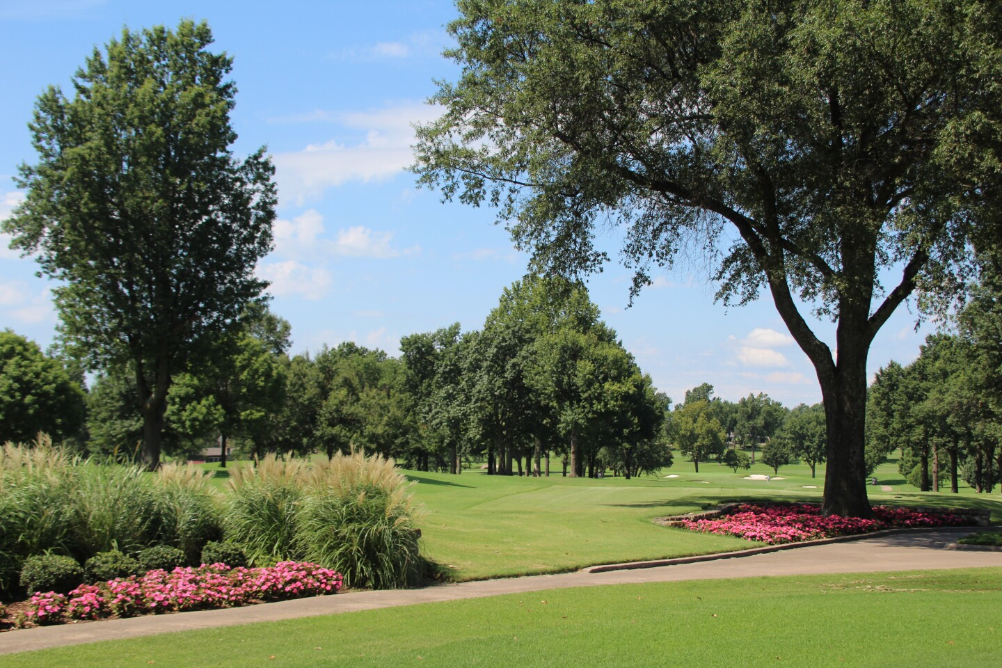 Tree fairway roses - Gateway First Bank Tulsa Junior Hosted by Bo Van Pelt - 2020.JPG
