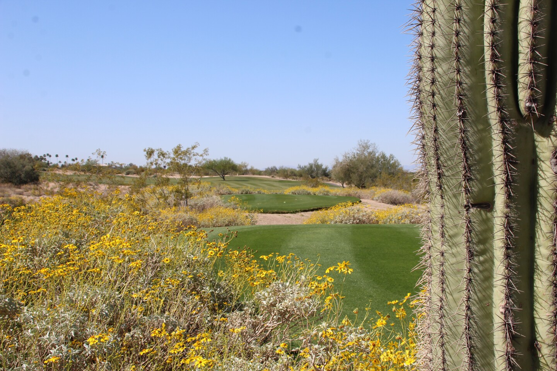 Longbow Golf Course - 2021 - PING Heather Farr Classic.JPG